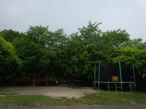 緑に囲まれたトランポリン_b0174425_18315681.jpg