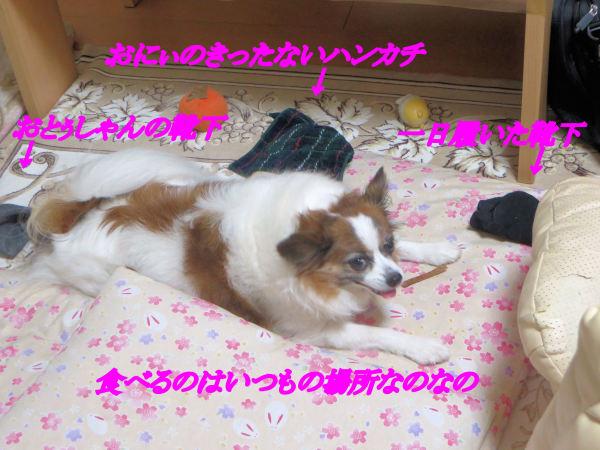 a0149240_22193821.jpg