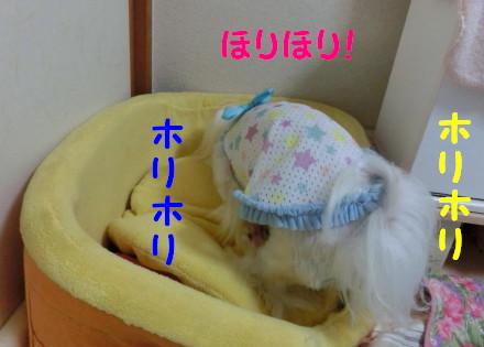 b0193480_15325682.jpg