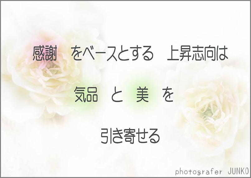 f0215487_0373724.jpg
