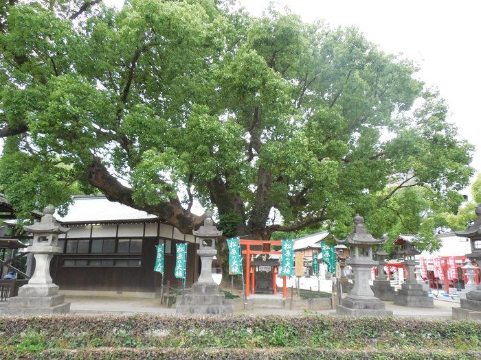 佐賀の単館映画館、シアター・シエマ_d0116009_0313055.jpg