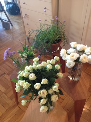 私も大興奮♪ハーブとお花とプロバンスコラボクラス♡_f0095325_1615198.jpg
