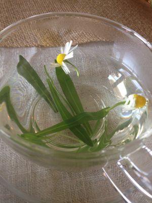 私も大興奮♪ハーブとお花とプロバンスコラボクラス♡_f0095325_163125.jpg