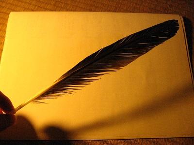 アオサギの羽ペン作成_f0182936_20523311.jpg