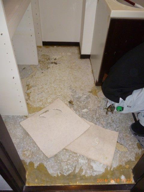 在来浴室からTOTOサザナへリフォーム 5_e0207151_16321348.jpg