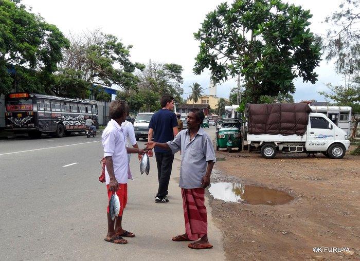 スリランカ旅行記 17  ゴールからコロンボへ_a0092659_1805237.jpg