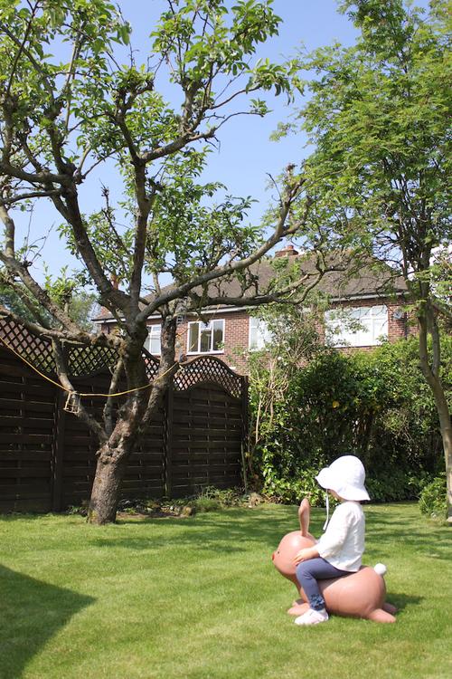 Nanny のお庭_a0137487_450066.jpg