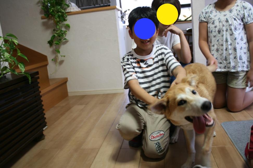母と再会&ぽてとと再会_f0242002_23131829.jpg