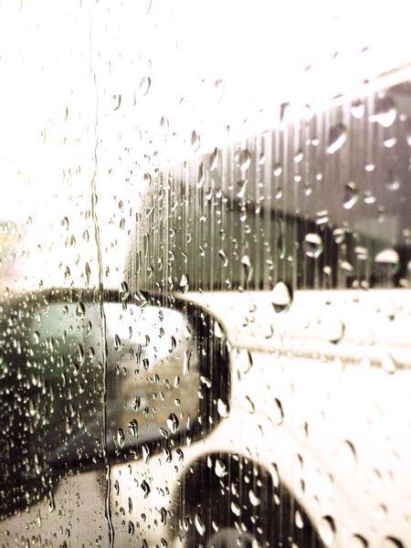 梅雨_f0155808_17303629.jpg
