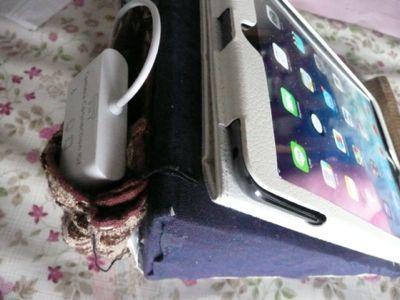 やっと一息・・・iPad台にポケット_a0050728_9493199.jpg