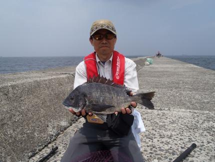 最新釣果 クロダイのへち釣り _e0116534_19101390.jpg