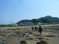 5月31日(土)6月1日(日)白浜TOUR&講習★_f0079996_13595869.jpg