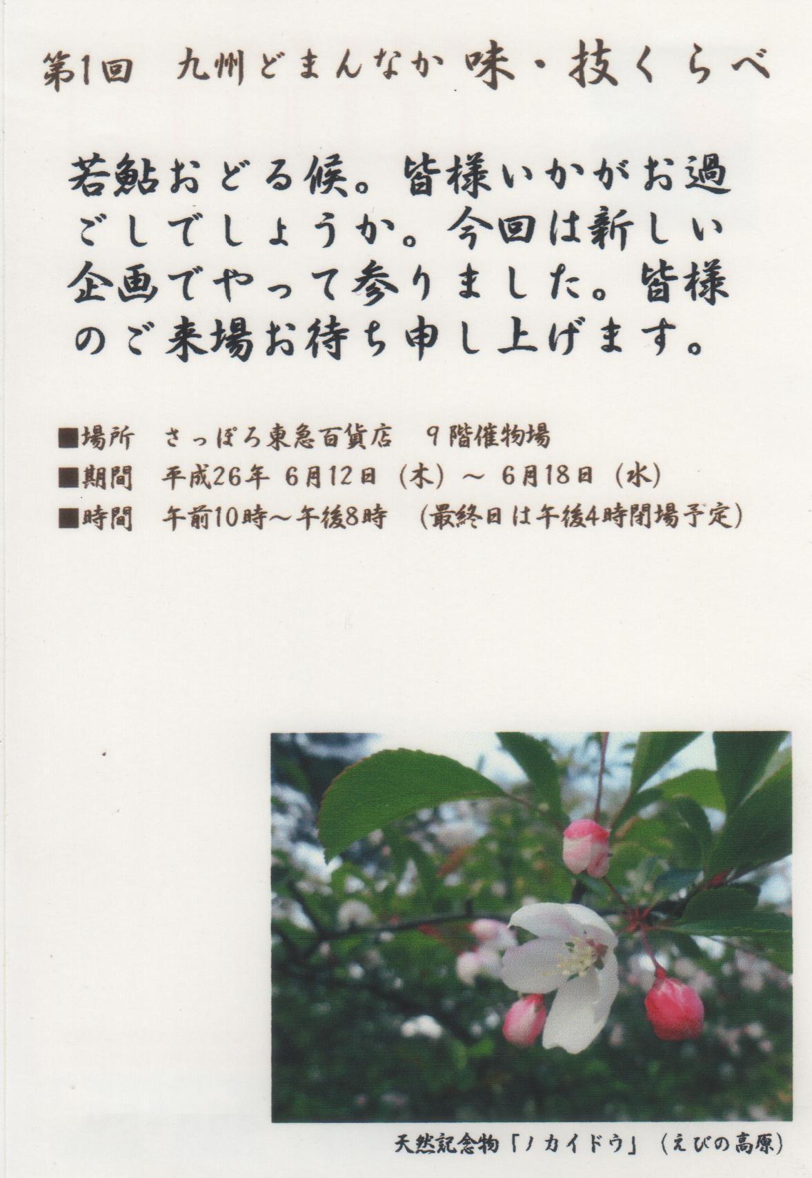 b0172502_1385738.jpg