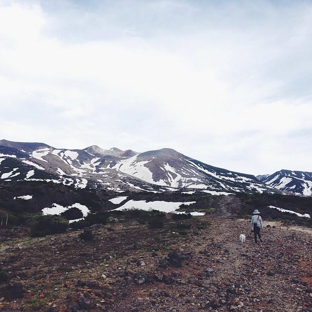山へ森へ _f0032814_050134.jpg