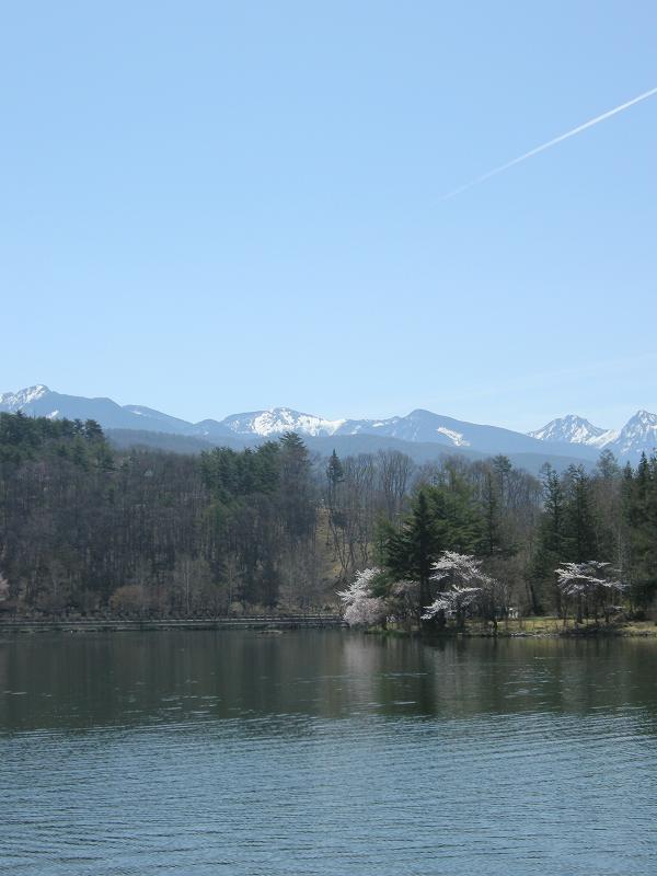 八ヶ岳の景色_f0100825_13131933.jpg