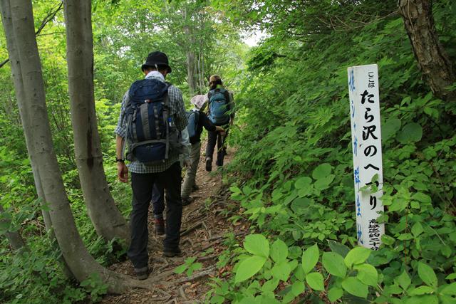 ヒメサユリ_a0267861_2014644.jpg