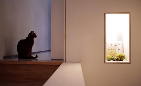 [猫的]夕暮れのオブジェ_e0090124_21142039.jpg