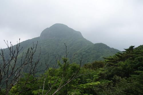 リハビリ登山_b0161750_22485397.jpg
