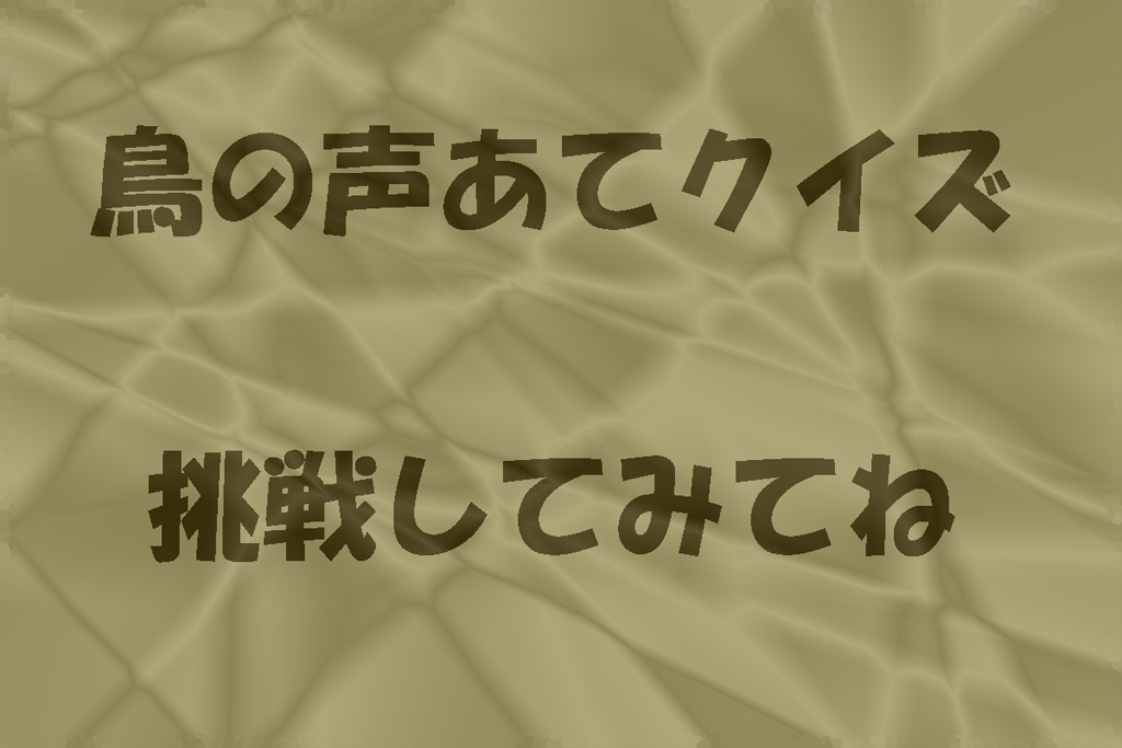 f0349409_16043593.jpg