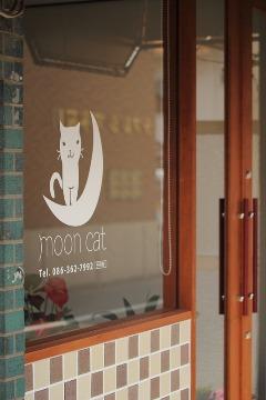 moon cat  〈 弱酸性美容室 〉_b0212031_2133169.jpg