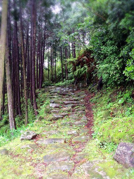 熊野古道@波田須・大吹峠コース_e0292546_23395552.jpg