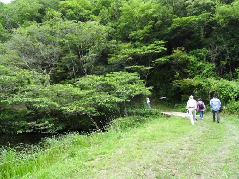 地域交流会2014    in  孝子の森     by     (TATE-misaki)_c0108460_00083850.jpg