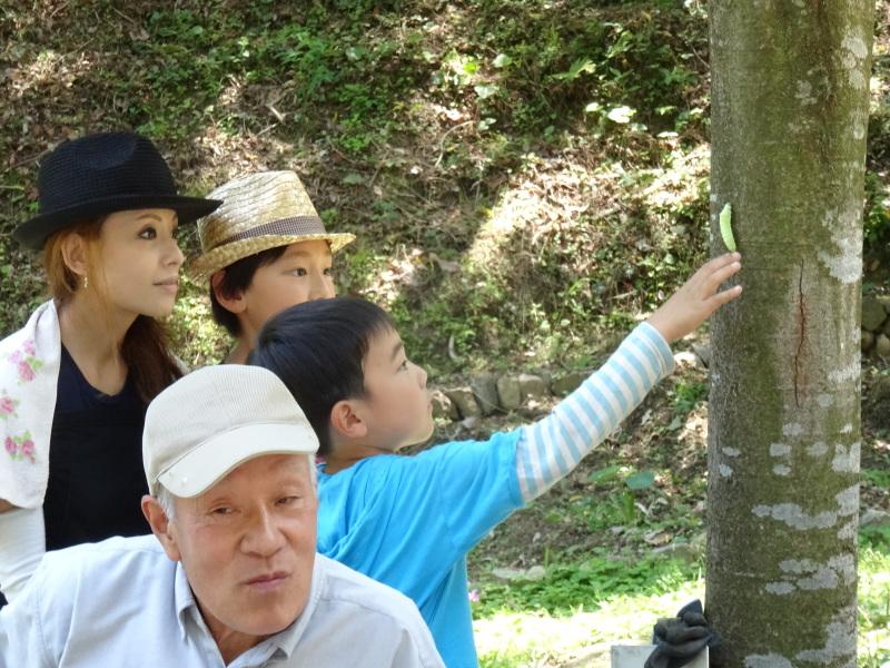 地域交流会2014    in  孝子の森     by     (TATE-misaki)_c0108460_01484737.jpg