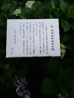 d0080566_1823271.jpg