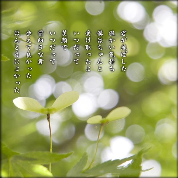 a0197968_1901734.jpg
