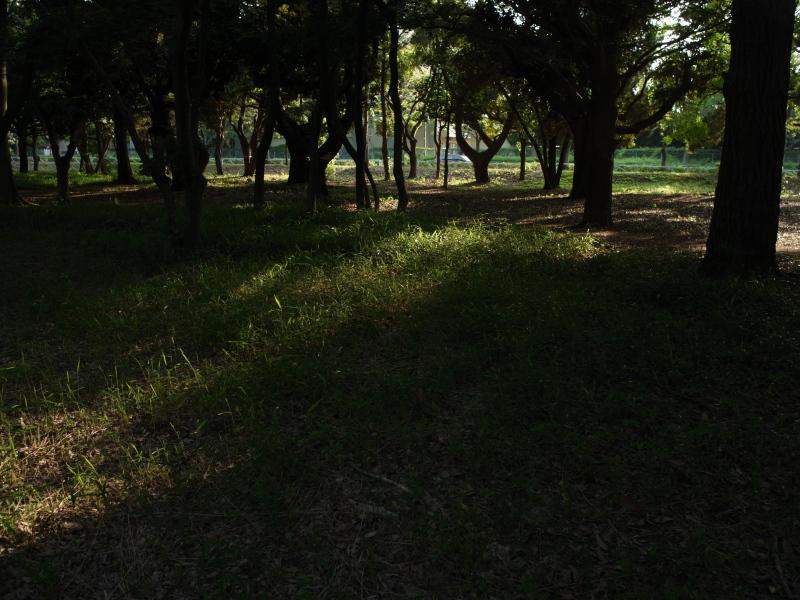 f0175998_0104942.jpg