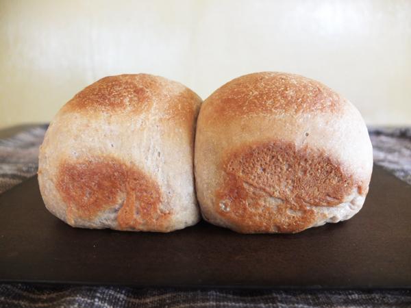 麦芽パン_d0174105_1633464.jpg