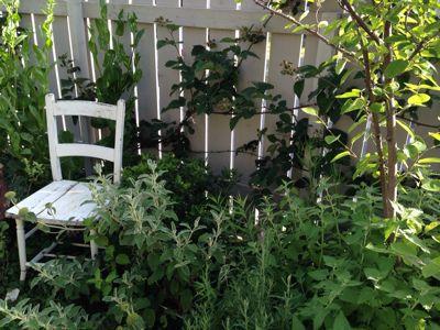 やさしい庭の手入れ_e0233111_7334822.jpg