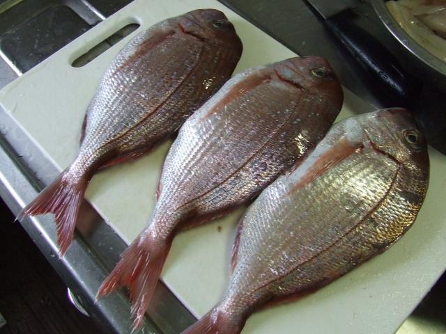 鯛の煮つけ_f0019498_19371591.jpg