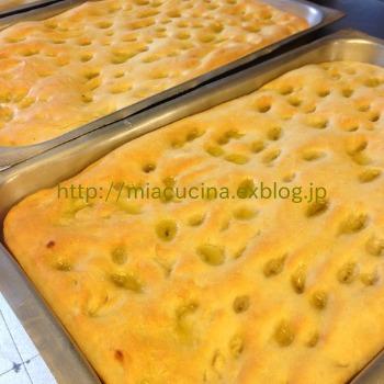 イタリア食旅行記①ジェノヴァのフォカッチャ_b0107003_15382859.jpg