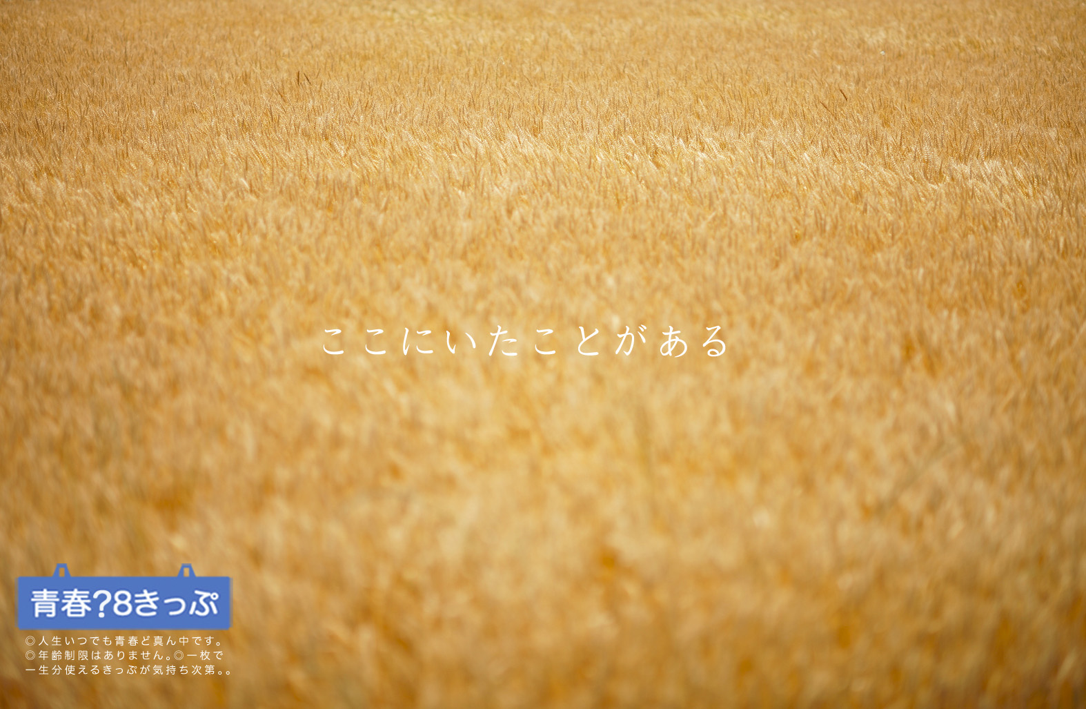 青春きっぷ_a0120304_2083949.jpg