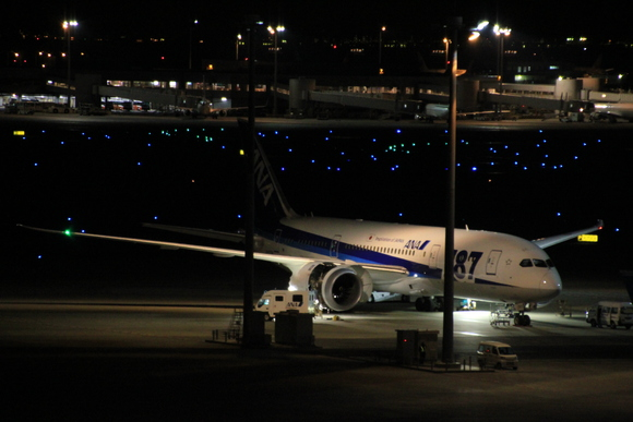 羽田空港国際線レポ  午前0時頃。。_d0202264_2140139.jpg