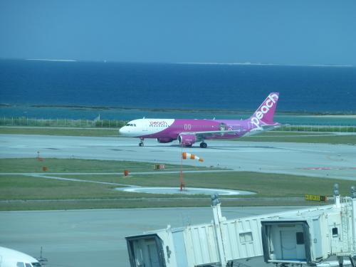 沖縄旅のれぽ 最終回_c0100865_00272422.jpg