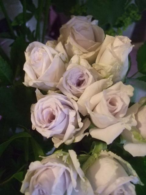 オークリーフ(6月の花たち)_f0049672_16371120.jpg