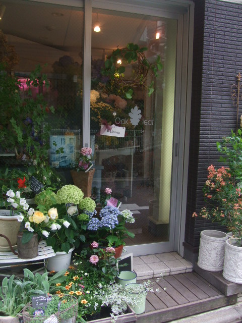 オークリーフ(6月の花たち)_f0049672_1695954.jpg