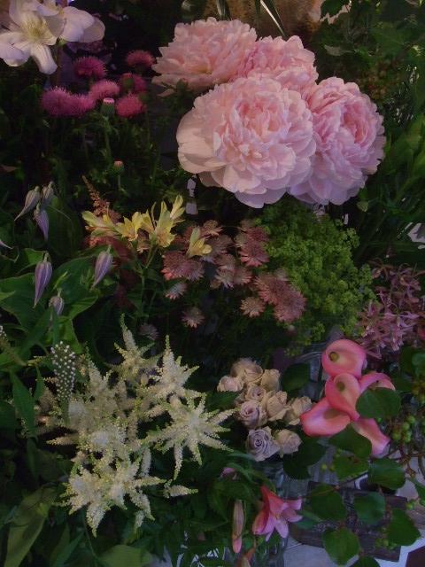 オークリーフ(6月の花たち)_f0049672_17103385.jpg