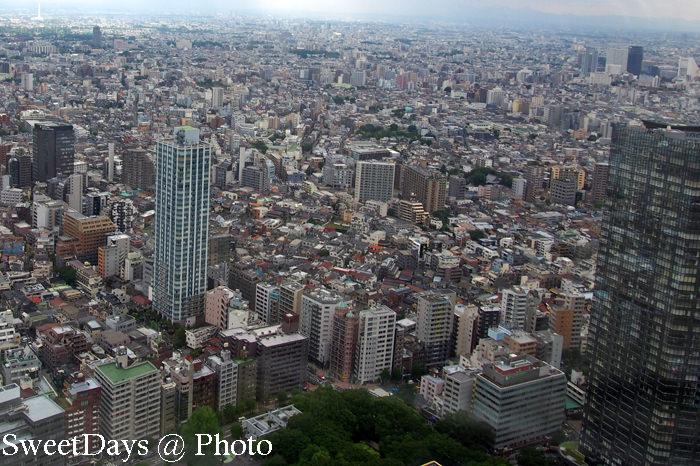 都庁(the Tokyo Metropolitan Government office)_e0046675_9275863.jpg