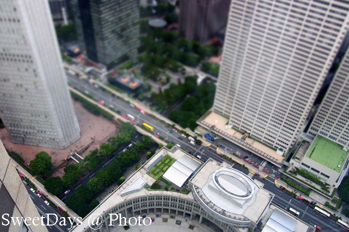 都庁(the Tokyo Metropolitan Government office)_e0046675_9282124.jpg