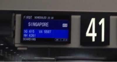 シンガポールへ_f0076322_13325122.jpg