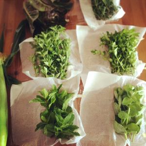 CAさんの野菜_e0015023_21143859.jpg
