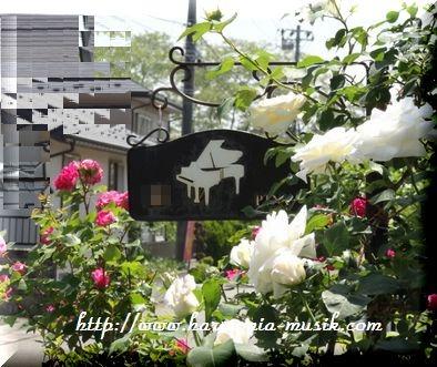 ピアノ教室☆サインプレート_d0165645_1957243.jpg