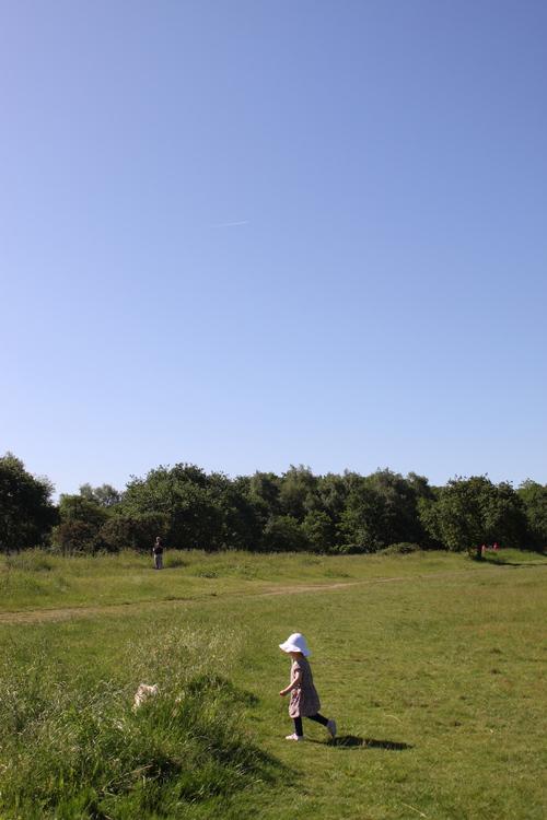Common で夏日さんぽ_a0137487_425435.jpg