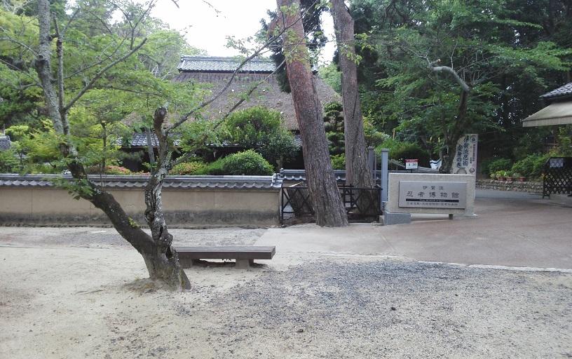 六月十一日 西日本遊學 十一日目_a0165993_0205472.jpg