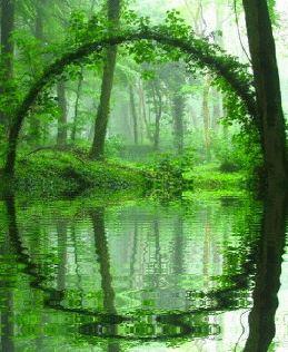 緑に囲まれる_d0263815_17212472.jpg