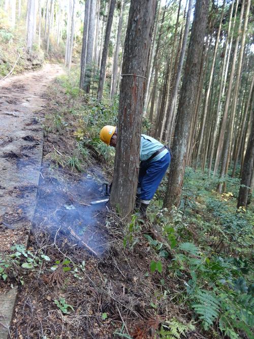 木材切り競争、張り切りすぎました。 山本忠さん、太田善博さん_c0103137_13403225.jpg