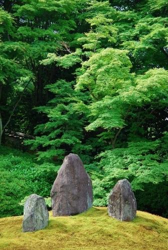 京巡りXIII_b0314043_08262563.jpg